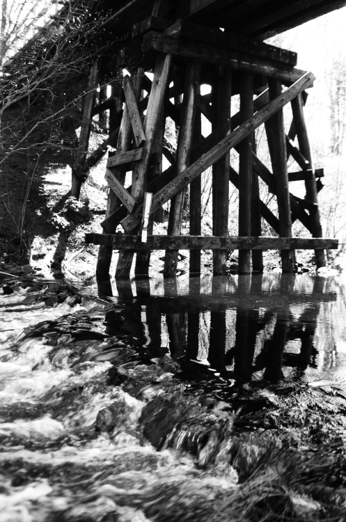 more hidden bridges/curvilinear reflections t-max 100/expired 1990/processed 2012/apparently still works beautifully.