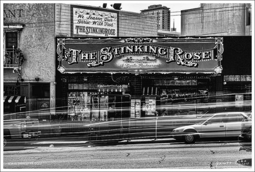 The Stinking Rose on Flickr.
