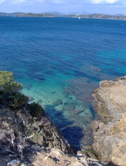 wildefleur:  Porquerolles, Hyères.Take me here any day of the year, s'il vous plaît! x