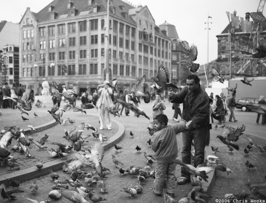 Amsterdam, The Netherlands:  September, 2006.  Pigeon attack.   Leica M6 TTL.  35 'lux.  Lab scan »>Aperture.  (Ilford Delta 100 with)