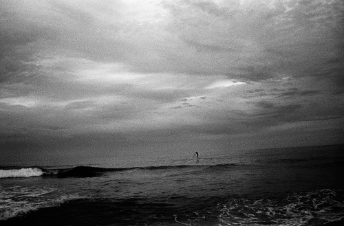 Paddle boarder, Avalon Beach, April 2012.