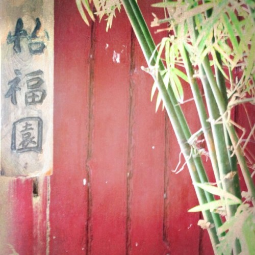 Bamboo, red fence and a sign #plant #bamboo #red #green  (Taken with Instagram)