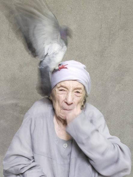 louise bourgeois by alex van gelder