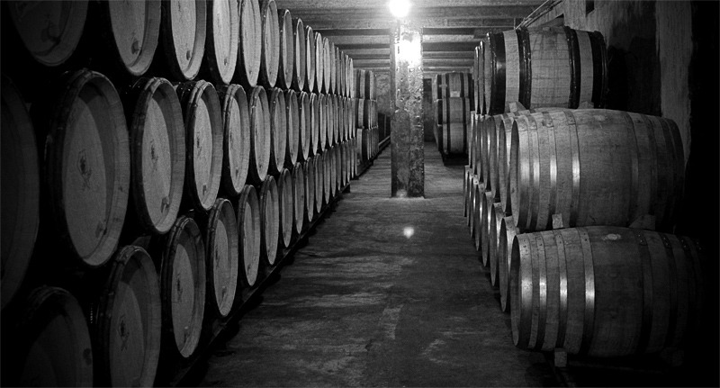 Wine barrels, Rhône valley (France)