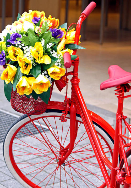steadyeddie:  decorated-bicycle-vaidas-bucys.jpg