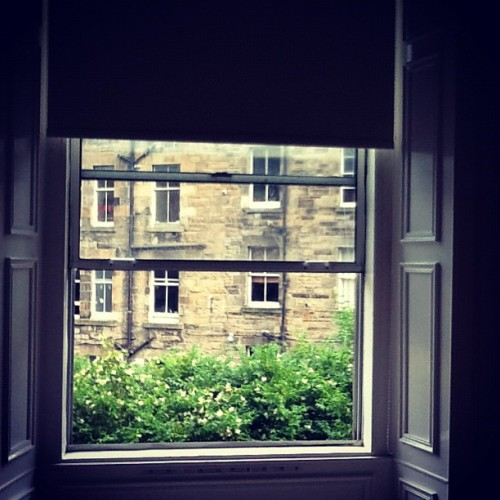 Window view from my room w Dickie and Emma. Gorgeous!! (Taken with Instagram)