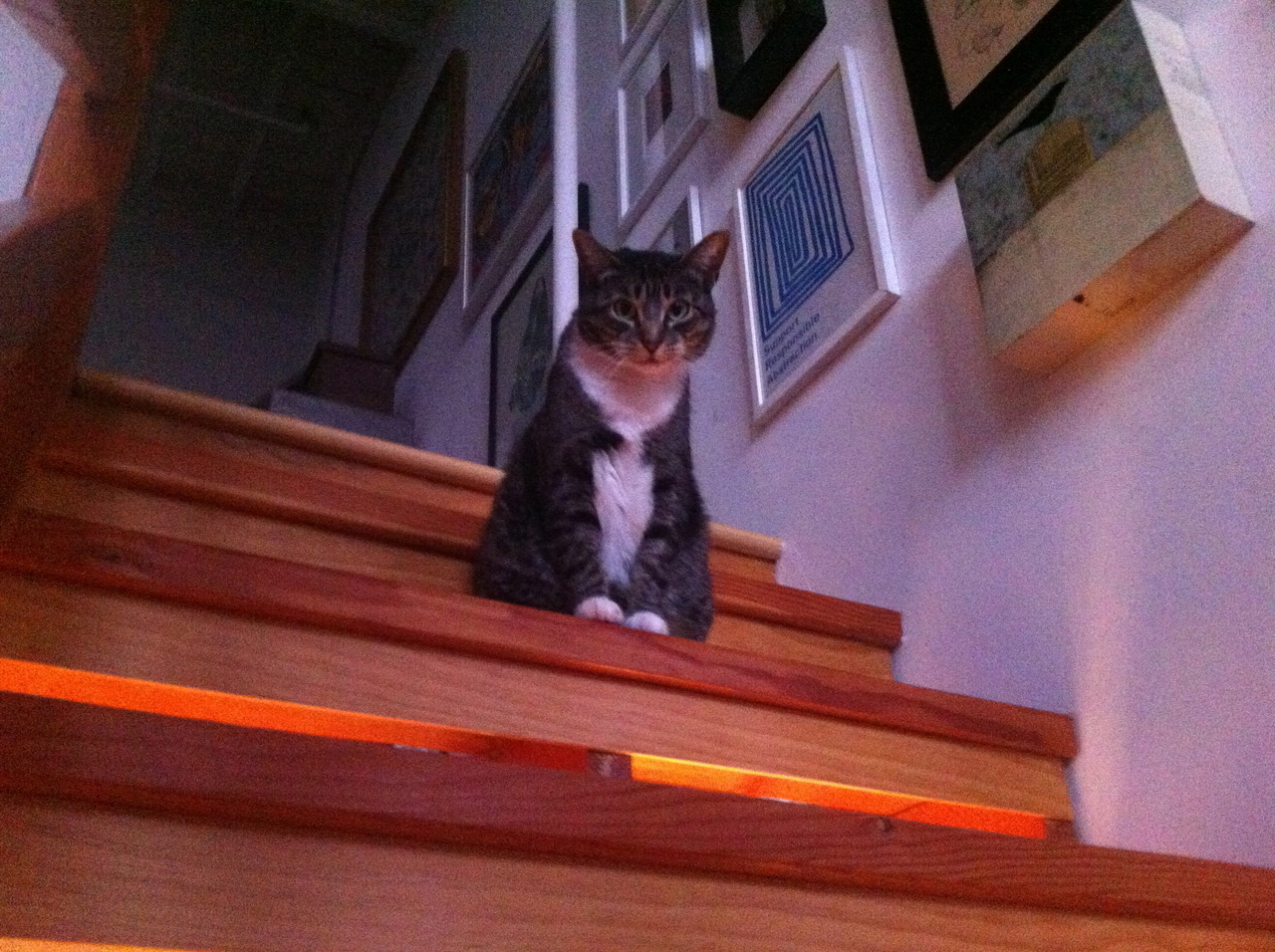 The judgement on the stairs.