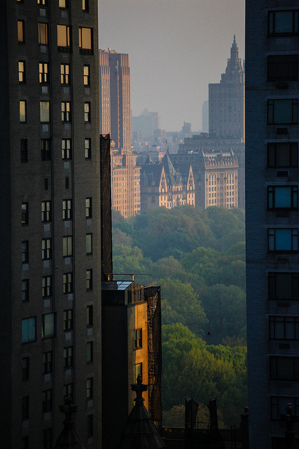 newyorkmonti:  Central Park and the Dakota