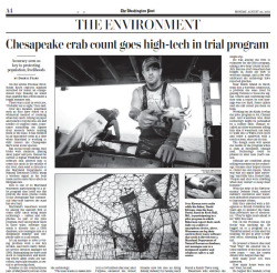 Photos & video I shot for the Washington Post - ran on A4. Story: 'Pilot program seeks more accurate count of Chesapeake Bay crabs' Gallery: Electronic crab count Video: Catching blue crab
