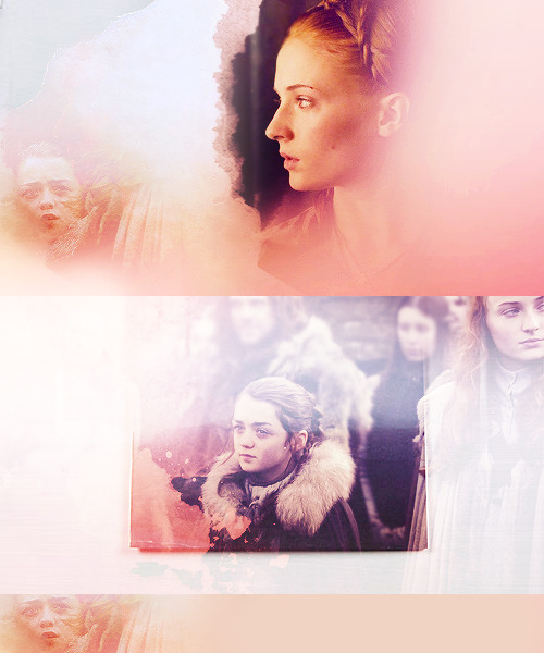 I need to find my sistercharacter shuffle - Sansa & Arya - requested by gwnstacy