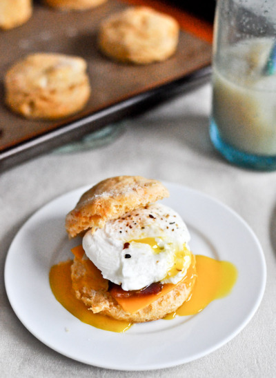 foodopia:  sweet potato breakfast biscuits: recipe here