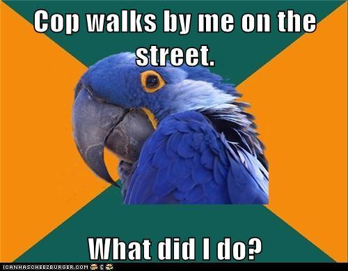 Paranoid Parrot: They Know!http://advice-animal.tumblr.com