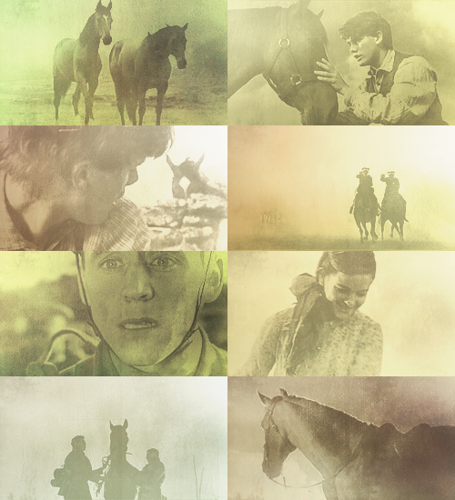 Top 50 Movies » War Horse