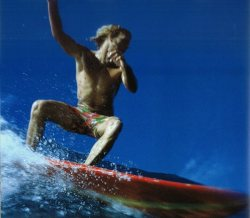 thats-gnarly:  Midget Farrelly, 1970. Photo: LeRoy Grannis