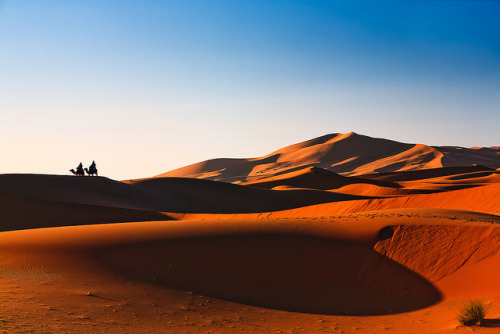 Sahara Views by John & Tina Reid on Flickr.