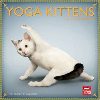 Yoga Kittens mini 2013 wall calendar