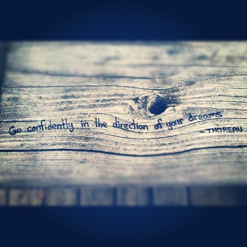 themusicbuffalo:  #thoreau #literature #quotes #graffiti #inspiration (Taken with Instagram at Como Lake Park)