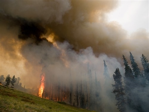Idaho resort town ordered to evacuate over wildfire (Photo: Handout / Reuters) Reuters: A 91,000-acre (38,800-hectare) wildfire in the Boise National Forest closed in from three directions on an Idaho mountain town on Monday as authorities worried about the safety of roughly 30 residents who have refused to evacuate. The Elmore County Sheriff's Office ordered evacuations over the weekend as thick smoke from the Trinity Ridge Fire posed a health hazard and limited visibility on the single road to Featherville, a popular summertime resort at the foot of the Trinity Mountains on the South Fork Boise River. See more in the Photoblog or read the complete story.