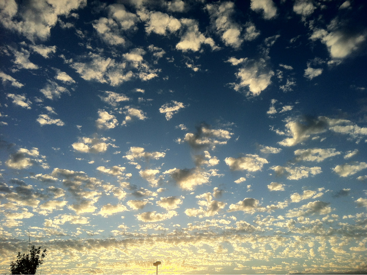 nerdsandcupcakes:  The sky this evening. Whoa.