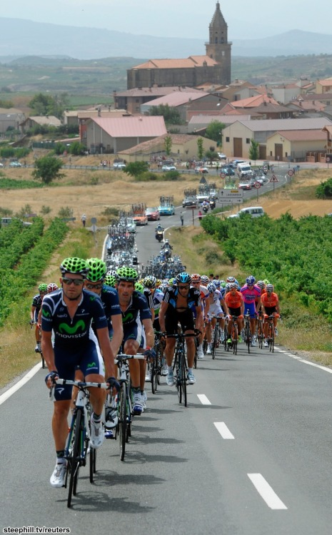 The Movistar Team lead the peloton through the vineyards at the Vuelta a España during stage 3. via steephill.tv
