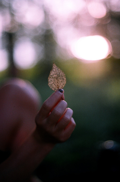 hellanne:  (by angela larose)