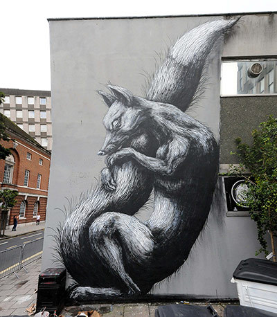 Belgium's Roa - city fox