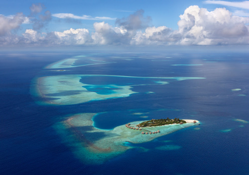 travelingcolors:  North Atoll | Maldives (by Oleg Gaponyuk)
