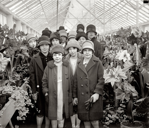 Ruth Jardine Visits the U.S. Botanical GardensBelow is a photo from 1927 of Ruth Jardine, the daughter of Secretary of Agriculture William M.…View Postshared via WordPress.com