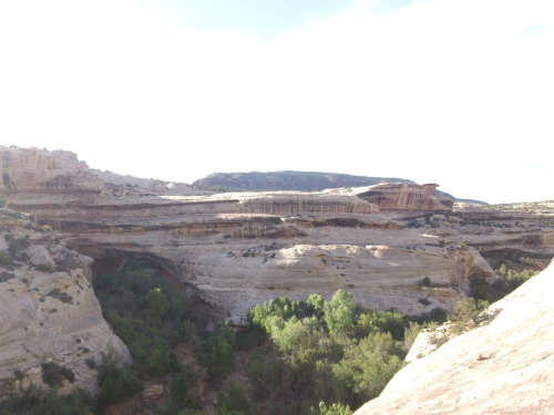 "natural bridges n.m.: on the far right, you can actually see where we took a wrong turn due to our inadequate ""trail-finding skills""…"