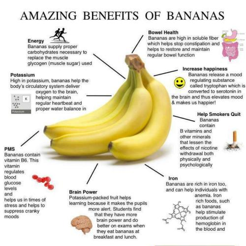 unknowncraving:  Benefits of bananas