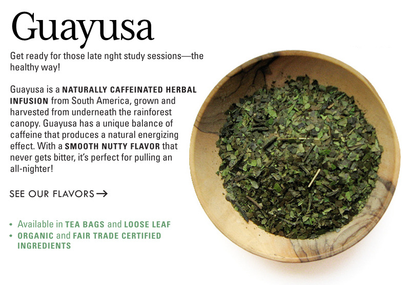 Shop our guayusa teas »