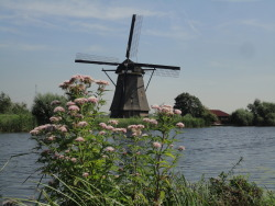 Kinderdijk (Holland), August 15th, 2012