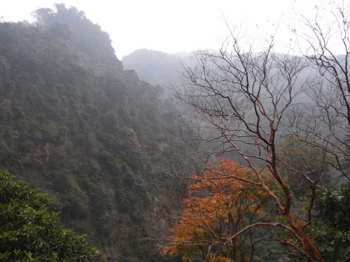 "PHOTO OF THE WEEK: Natural Beauty – Winter in Wulai  Welcome Abroad's Natural Beauty photography winner for this week is Rosa Wong, who took this picturesque photo from the Lover's Bridge at Wulai, near Taipei, which is popular for its hot springs, indigenous culture and sightseeing. As Rosa says, ""the mountains seem to be in layers in the fog, and the scene looks like a Chinese ink painting.""  Rosa used an Olympus XZ-1 camera to get her shot. ***  There's just one more chance to enter the Natural Beauty category in our Photo of the Week competition. Next month the subject will be ""The Changing Face of China"". If your picture is selected, we will publish it right here on Welcome Abroad and you will win a HK$300 Cathay Pacific Holidays cash voucher. Read the Rules of Submission then send your photograph to marketing@cxholidays.com If you are unsure about how to resize or optimize your photograph before submitting, please click here to read our simple FAQ."
