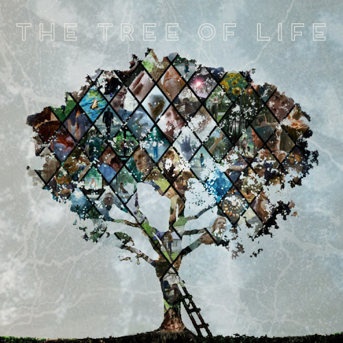 76. The Tree of Life (2011): Gorgeous film once you get into it. The cinematography alone was worth watching it for. I was also really impressed by the acting, especially from the younger actors. I feel like you could watch it a million times and get a million different messages from it.