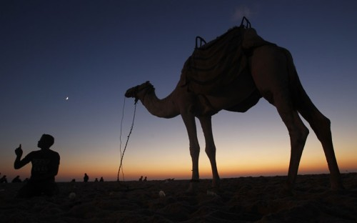 A Palestinian boy sits next to a camel on the beach in Gaza City @telegraph.co.uk