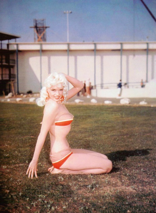 thatsjustelegant:  Jayne in 1956.