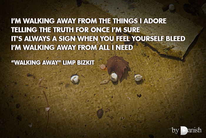 """Walking Away"" Limp Bizkit I'm walking away from the things I adoretelling the truth for once I'm sureit's always a sign when you feel yourself bleedI'm walking away from all I need"