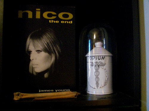 Two of my favorite things, Nico & Opium, in one of my favorite boxed bookcase shelves in our house…