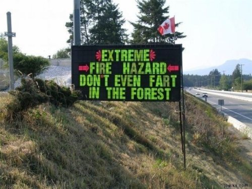 Extreme Fire Hazard, Don't Even Fart in the Forest Your next fart could be silent, and deadlier than you ever imagined.