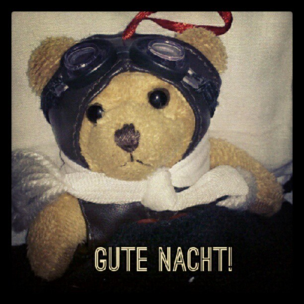 Gute Nacht! Heinz is going to sleep. #heinz #bear #cute #german (via Photo by mesideesnoires • Instagram)