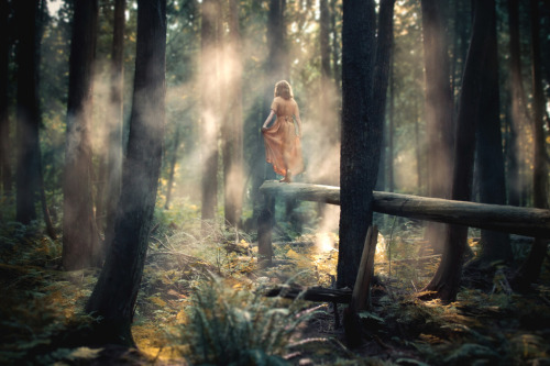 (by Elizabeth Gadd) Liz is a photography queen