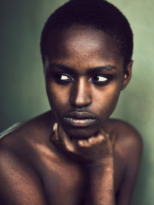 davidurbanke:  Ashane Rose by David Urbanke