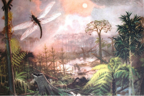 Meganeura Dragonfly Zdenek Burian Prehistoric Animals — wingspan of up to 30 inches