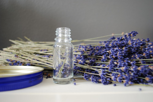 dried lavender on my desk