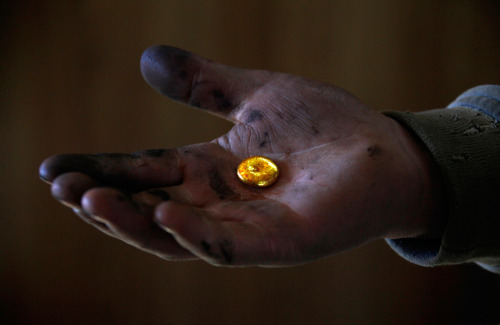 A small-scale miner holds his gold that was melted together at a processing plant north of Ulan Bator on April 5, 2012. Mongolia is home to some of the world's biggest unexploited mineral deposits, and has become one of the hottest destinations for billions of dollars of mining investment. (David Gray/Reuters) (The Big Picture)