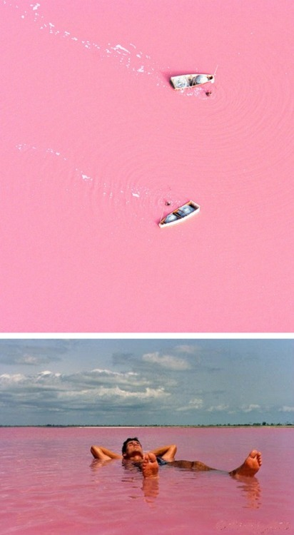 Senegal's Lake Retba or Lac Rose. The lake gives off its pink hue due to cyanobacteria, a harmless halophilic bacteria found in the water.