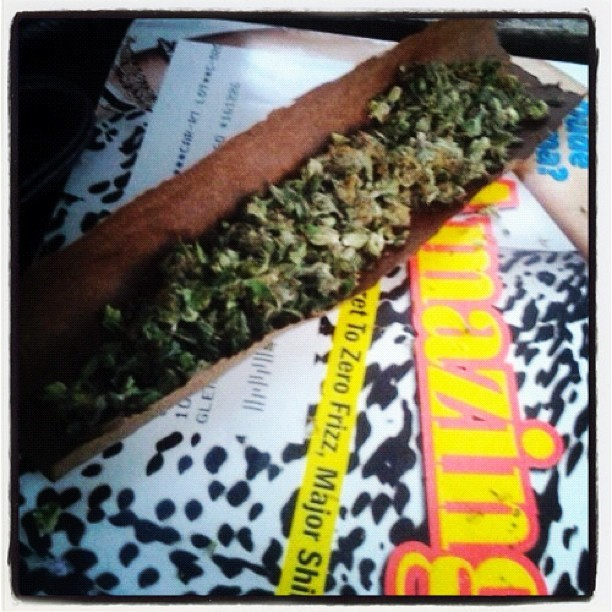 osamabinhigh:  #blunt #weed #cannabis #swisha #high  (Taken with Instagram)
