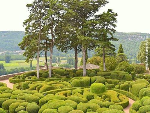 Stunning French Topiary Garden