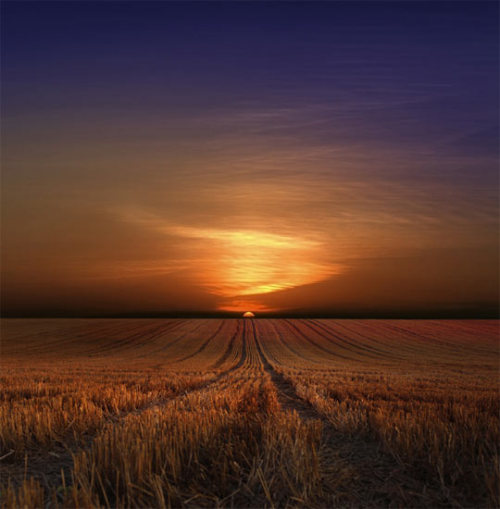 live-2-learn:  sunrise over the fields