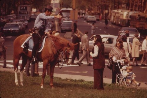 Mounted Policeman on Busy Downtown Thoroughfare, August 1973